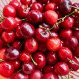 Влажные свежие сладостные вишни в стрейнере Стоковые Фото
