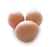 Влажные яичка и яичко в чашке формируют. Стоковые Фото