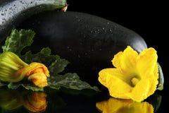 Влажные courgettes с цветками на черной предпосылке Стоковые Фотографии RF