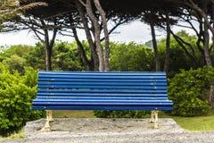 Влажный голубой стенд в парке Стоковое Изображение RF