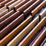 Влажный деревянный конспект Стоковое фото RF