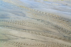 Влажный пейзаж пляжа Стоковое фото RF