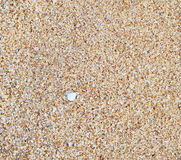 Влажный песок Стоковое фото RF