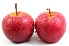 2 влажных яблока Стоковое фото RF