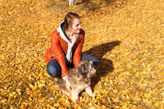 Владения девушки с руками собака Стоковые Фотографии RF