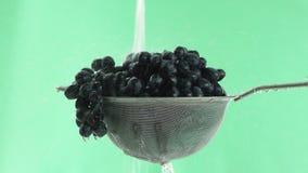 В видео мы видим виноградины в сетке, воду падая от верхней части в двигателе, зеленую предпосылку сток-видео