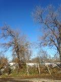 В воскресенье утром и снег почти идет стоковые фотографии rf