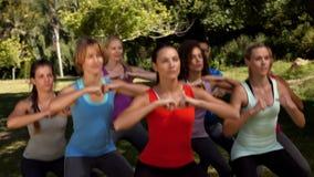 В высококачественной группе фитнеса формата сидя на корточках в парке акции видеоматериалы
