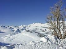 В горах Sibilline Стоковые Фотографии RF