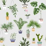 В горшке заводы и цветки в различных баках и плантаторах вектор иллюстрация штока