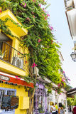В горшке заводы и цветки на улицах курорт Марбельи, Малаги Стоковые Изображения