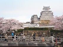 В день цветеня вишневых цветов полностью на замке Himeji-Джо Стоковая Фотография RF