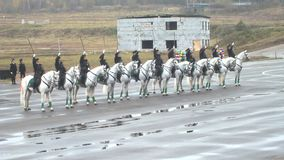 В девушках конной полиции как раз акции видеоматериалы