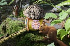 В лесе часто дом плодоовощ с крышей расшивы в глубинах леса Стоковое Изображение