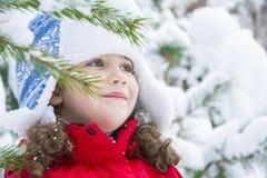 В зиме, в лесе, малая зима ящика, в лесе, малое Стоковое Изображение RF