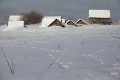 В зиме в селе Стоковое Изображение RF