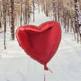 В зиме с влюбленностью Стоковое Изображение RF