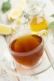 вливания horsetail фокуса equisetum чашки arvense чай стеклянного травяного naturopathy селективный Стоковая Фотография