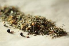 вливания horsetail фокуса equisetum чашки arvense чай стеклянного травяного naturopathy селективный стоковое фото rf