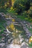 Влияния на потоке Стоковые Фото
