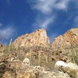 В каньоне Стоковое Изображение