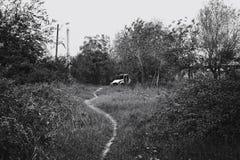 В конце дороги Стоковые Фотографии RF