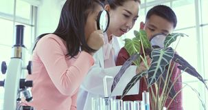 В лаборатории студенты смотрят через лупу сток-видео