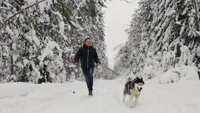 В лесе зимы, человек в черной куртке и джинсы бегут с собакой сибирской лайки, съемкой замедления Ель сосны акции видеоматериалы
