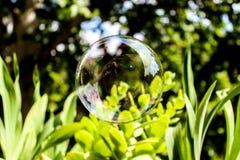 В моем собственном пузыре стоковое изображение