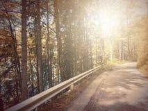 В осени Басня фантазии в парке с сценой восхода солнца стоковые фото