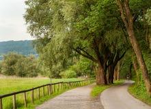 Вдоль берега озера Bodensee Стоковая Фотография