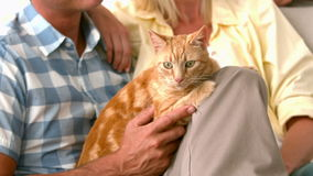 В парах замедленного движения счастливых с котом акции видеоматериалы