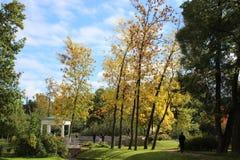 в парке в осени Стоковое Изображение RF