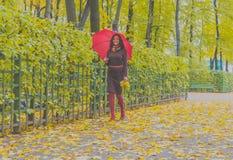 В парке девушка с зонтиком и листьями в осени Стоковое Фото