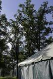 В парке Стоковая Фотография
