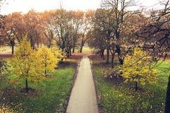 В парке Стоковое фото RF