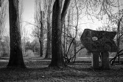 В парке Стоковая Фотография RF
