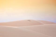 В пустыне, белые песчанные дюны, Ne Mui, Вьетнам Стоковая Фотография RF