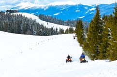 В древесинах на снегоходах Стоковое Изображение RF