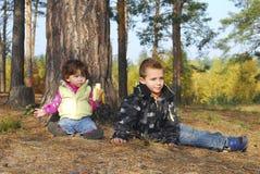В древесинах под сосной сидит мальчик и девушка Стоковая Фотография RF