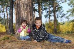 В древесинах сидит мальчик и девушка Стоковое Изображение RF
