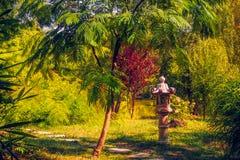 В саде Стоковая Фотография