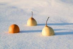 В свеже упаденном снеге 2 китайских груши и manadrin Стоковые Фотографии RF