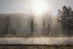 В тумане утра, пар поднимает от пруда от воды, p стоковая фотография rf