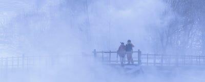 В тумане стоковое фото rf