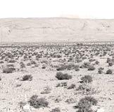 в ущелье Африке todra и деревне Стоковые Фотографии RF