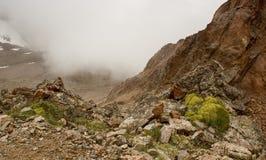В ущелье Tuyuk-Su Стоковая Фотография