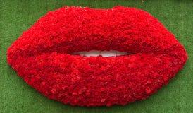в форме Рт цветки на траве предпосылки зеленой Стоковая Фотография RF