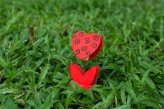 в форме Сердц держатель фото на зеленой траве Стоковые Изображения RF