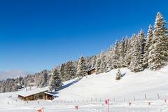 В швейцарском альп Стоковая Фотография